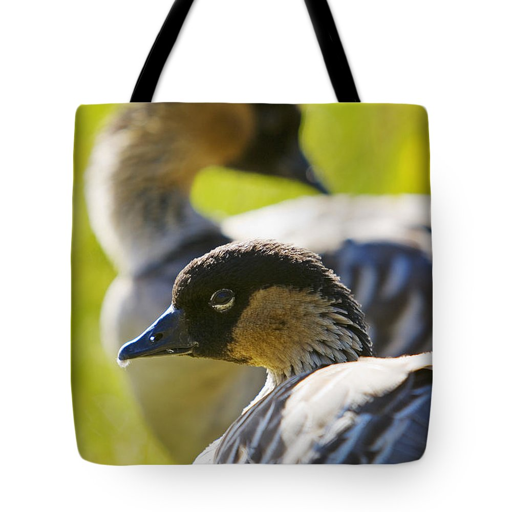 Animal Art Tote Bag featuring the photograph Nene Geese by Ron Dahlquist - Printscapes