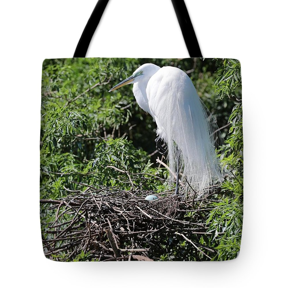 Egret Tote Bag featuring the photograph Nesting Great Egret With Egg by Carol Groenen