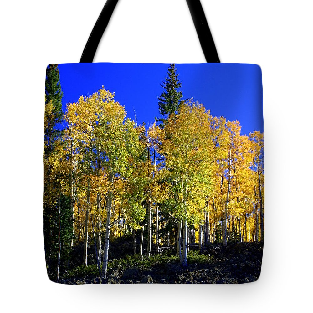 Fall Colors Tote Bag featuring the photograph Nevada Fall by Marty Koch