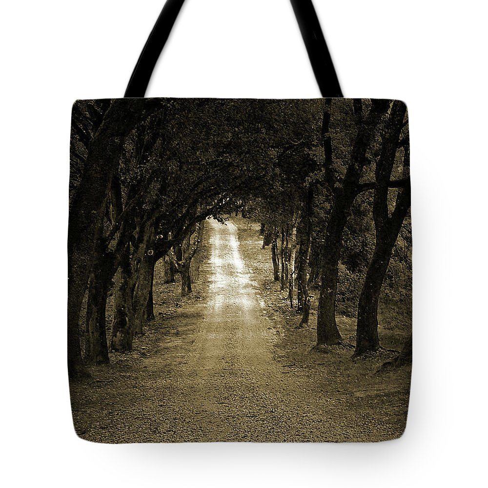 Autumn Tote Bag featuring the photograph Never Ending by Angela Wright