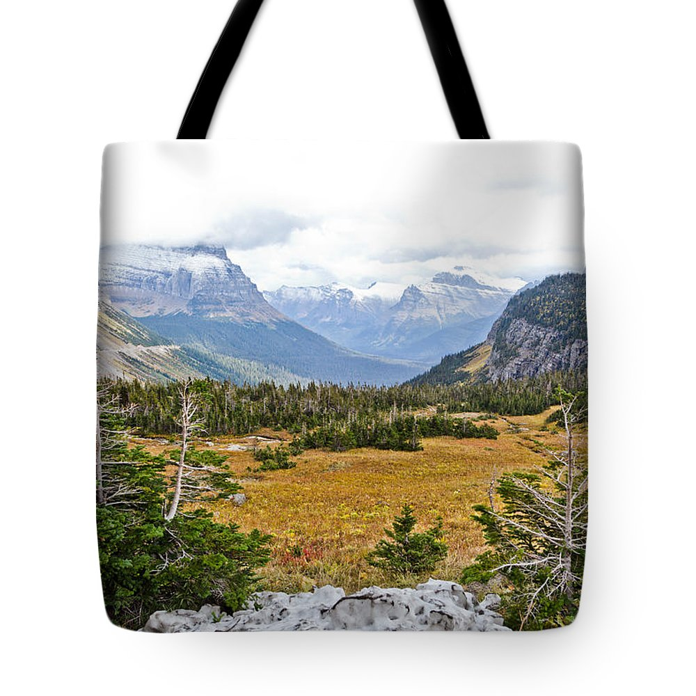 Mountains Tote Bag featuring the photograph New And Old Snow by Dan Dooley