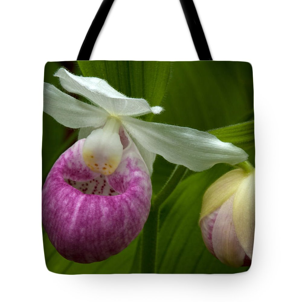 Wildflowers Tote Bag featuring the photograph New Birth by Irwin Barrett