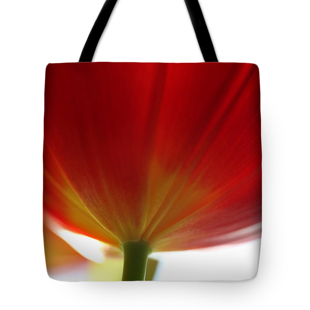 Tulip Tote Bag featuring the photograph New Day by Amanda Barcon