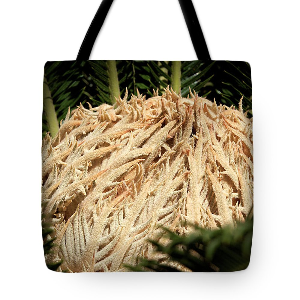 Palm Tote Bag featuring the photograph New Heart by Phyllis Denton