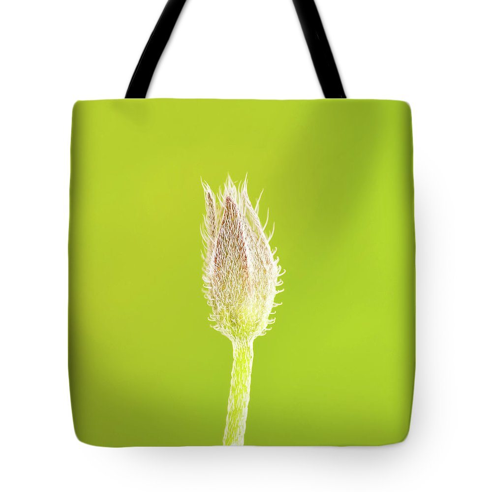 New Tote Bag featuring the photograph New Life by Wim Lanclus