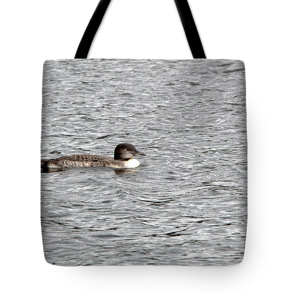 Seney National Wildlife Refuge Tote Bag featuring the photograph New Loon by Linda Kerkau