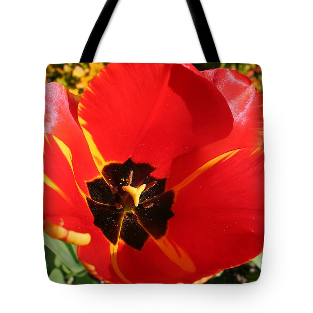 Red Tulips Tote Bag featuring the photograph New Spring Beginnings by Mary Gaines