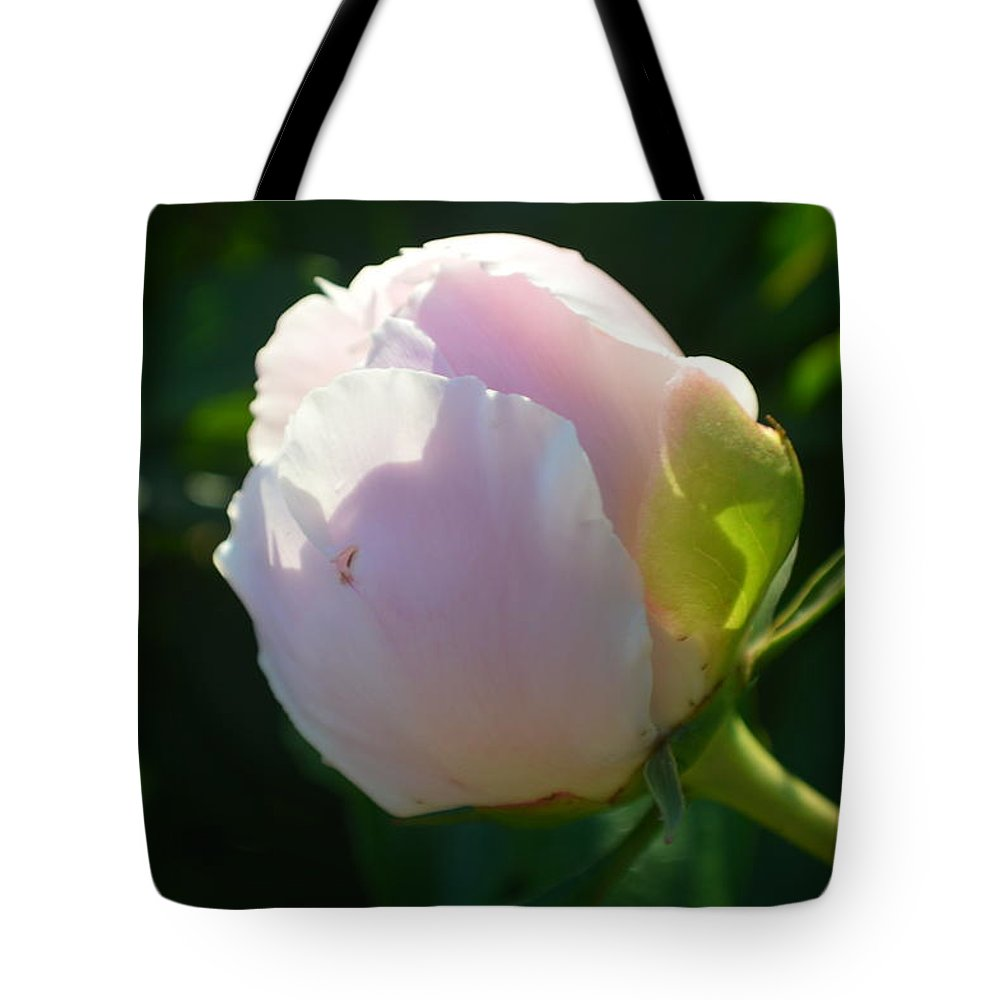 Flower Tote Bag featuring the photograph Next Stage After Bud Peony by Tina M Wenger