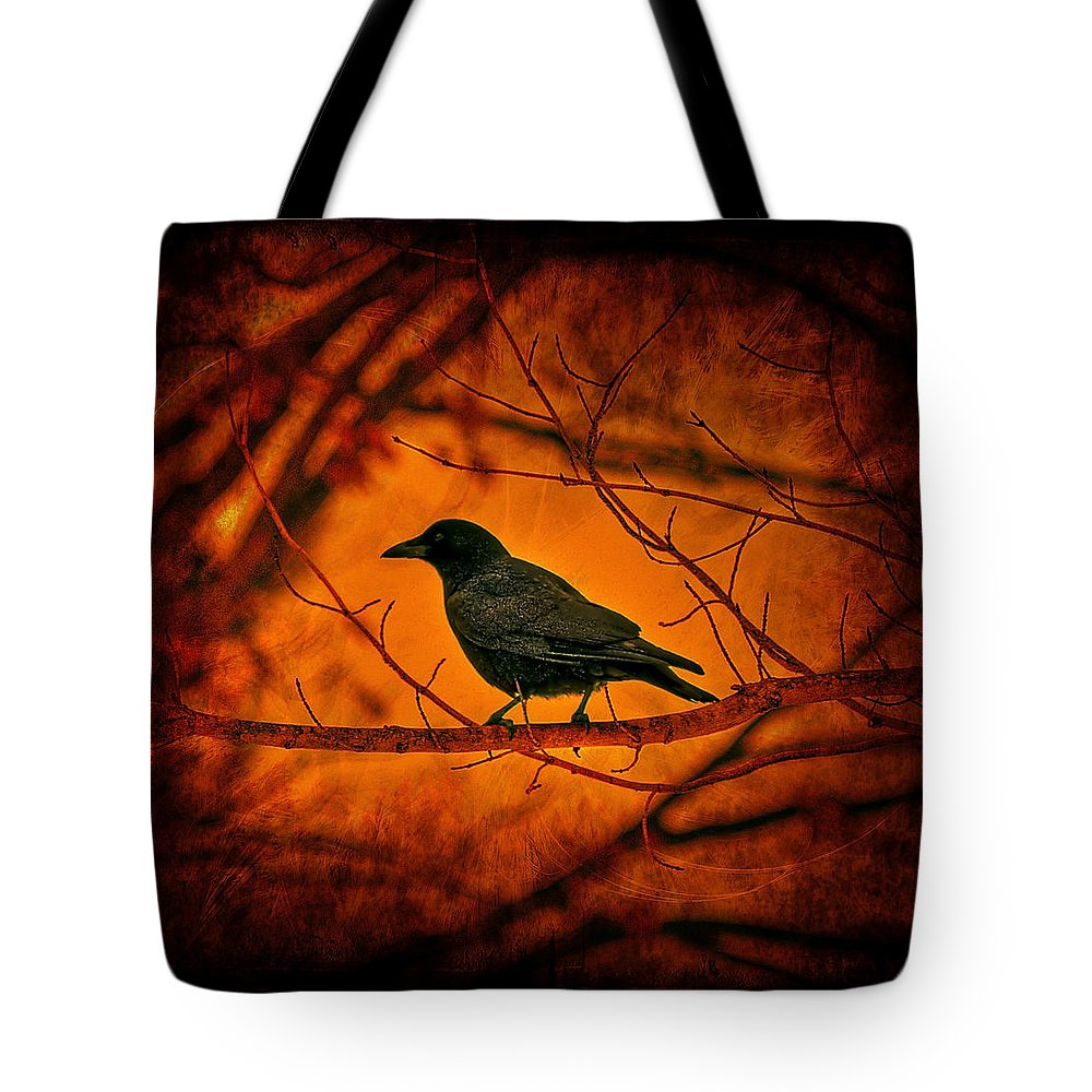 Bird Tote Bag featuring the photograph Night Guard by Evelina Kremsdorf