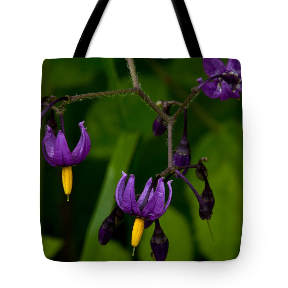 Wildflowers Tote Bag featuring the photograph Nightshade Wildflowers #5633 by Irwin Barrett