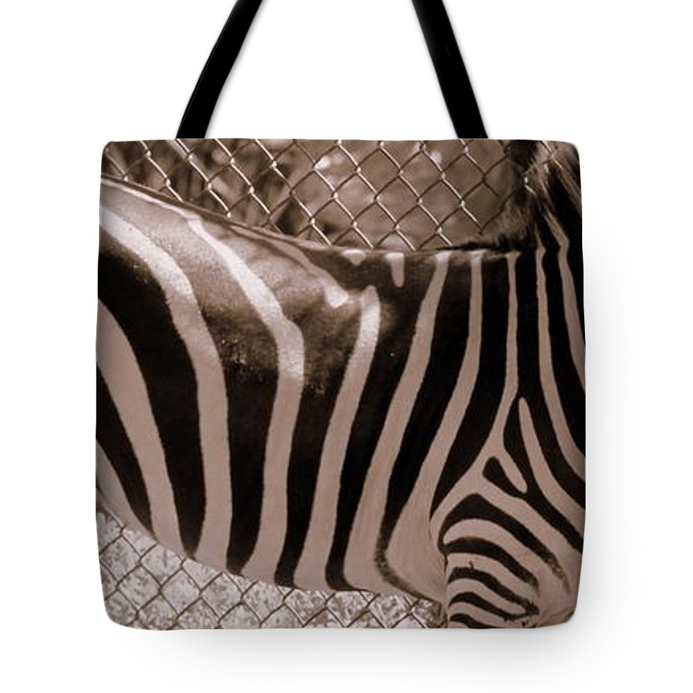No Where To Hide Tote Bag featuring the photograph No Where To Hide by Ed Smith