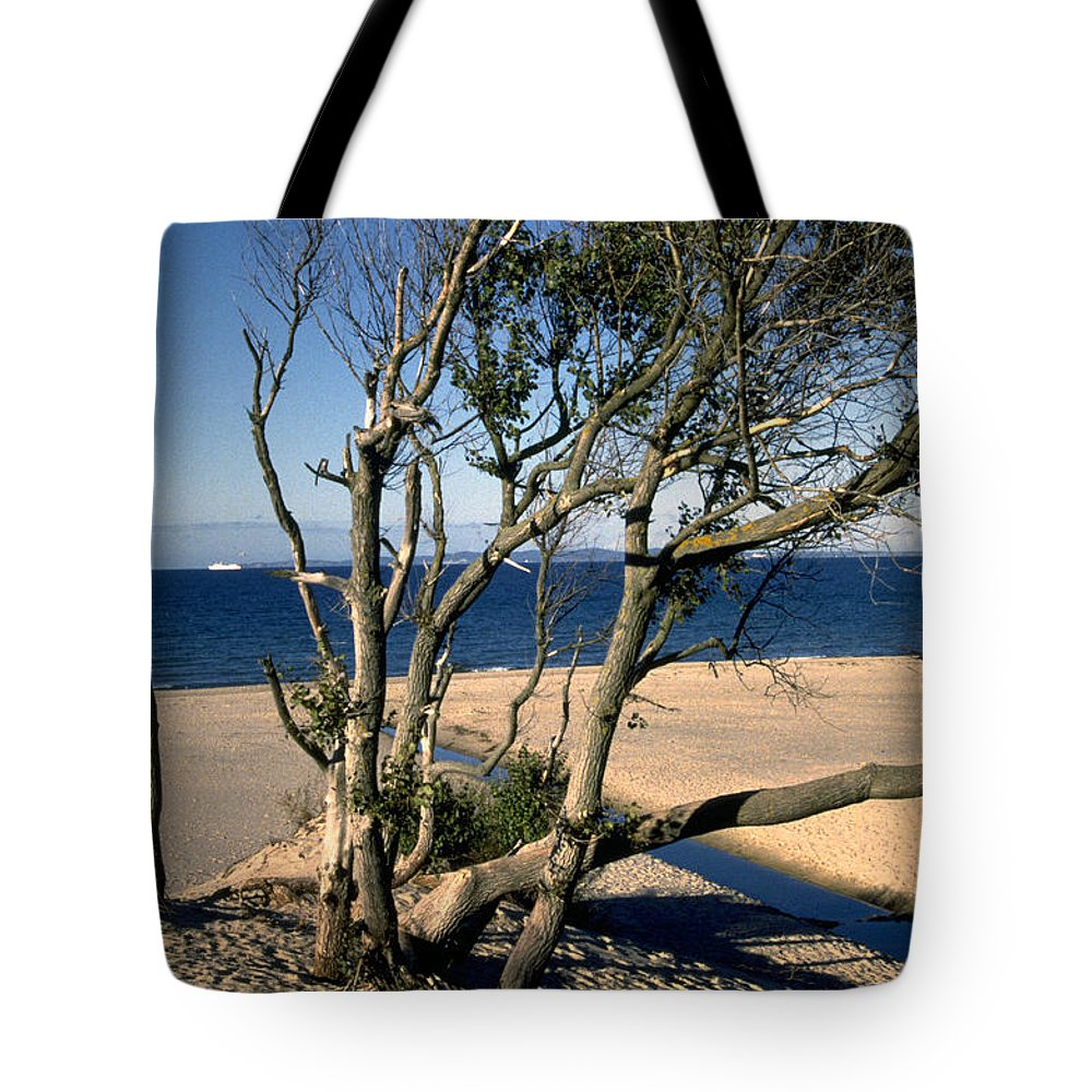 Denmark Tote Bag featuring the photograph Nordic Beach by Flavia Westerwelle