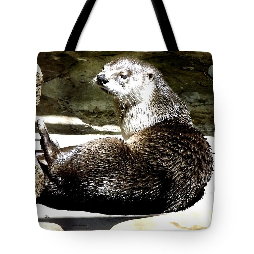 Otters Tote Bag featuring the photograph North American River Otter by Rose Santuci-Sofranko
