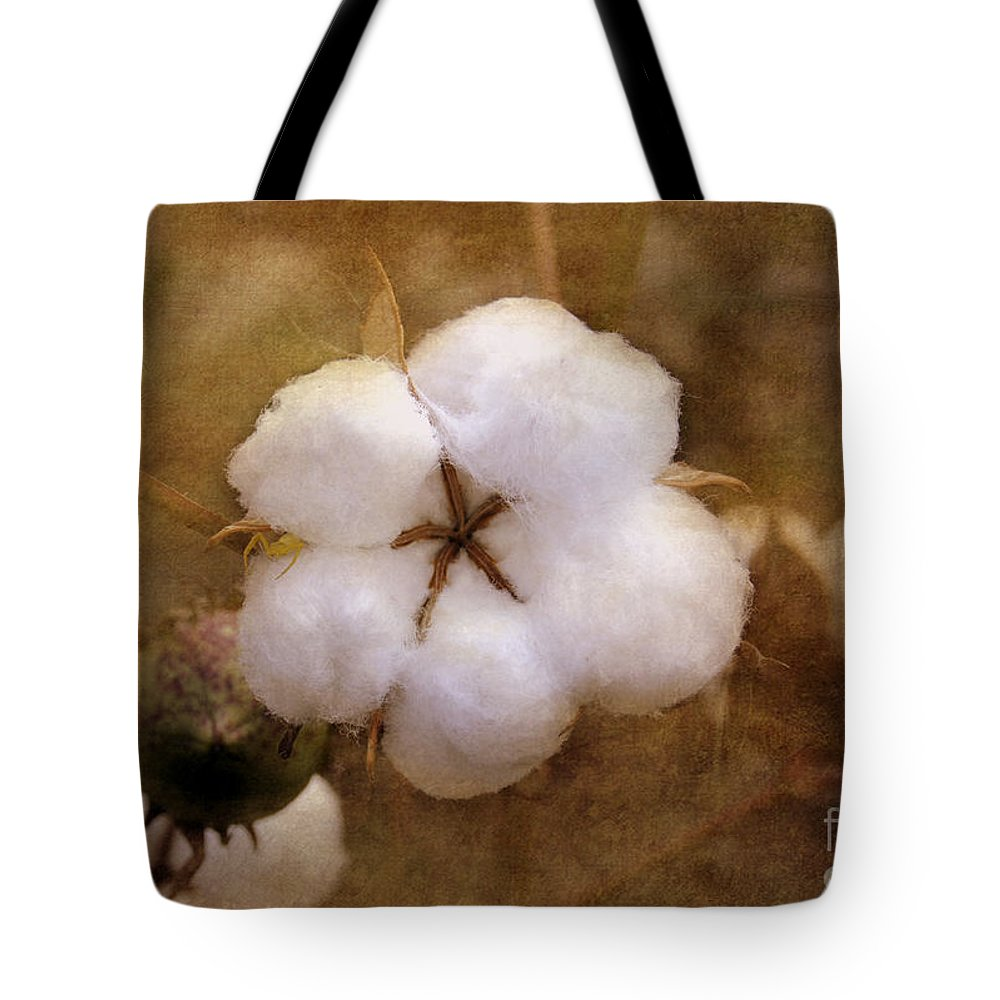 Cotton Tote Bag featuring the photograph North Carolina Cotton Boll by Benanne Stiens