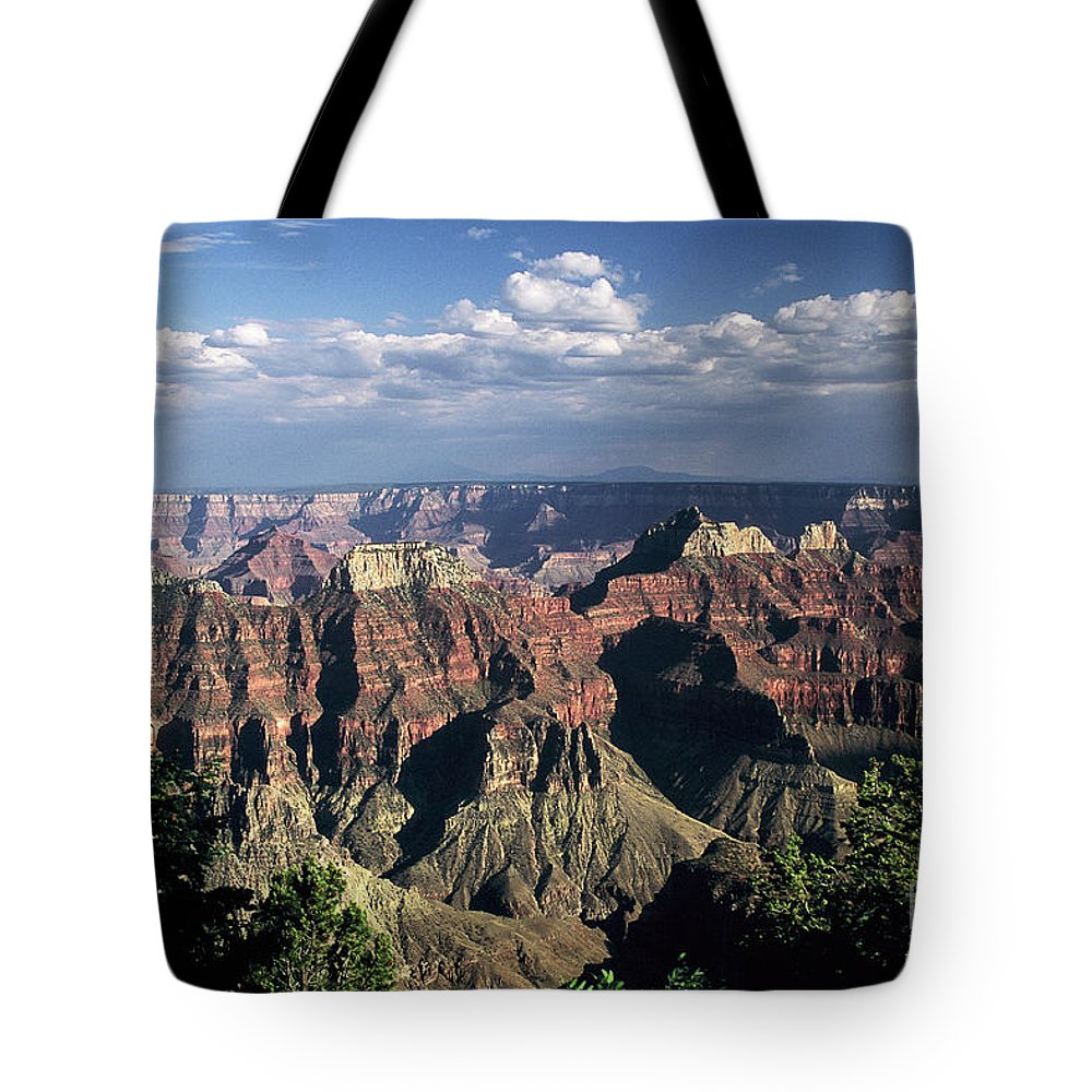 Grand Canyon; National Parks Tote Bag featuring the photograph North Rim by Kathy McClure