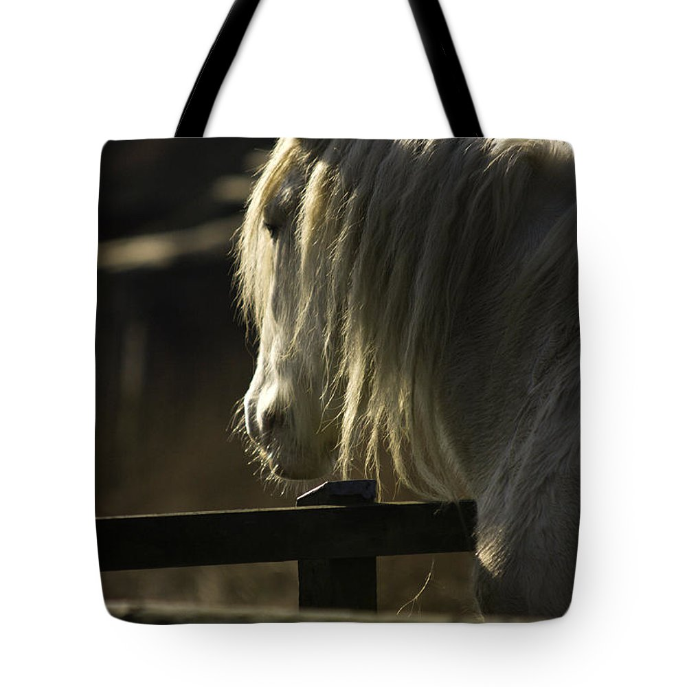 Horse Tote Bag featuring the photograph Nostalgy by Angel Ciesniarska