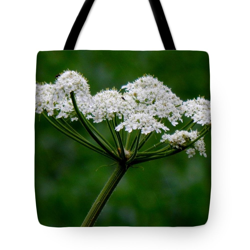 Spring Tote Bag featuring the photograph Not Royalty by Wild Thing