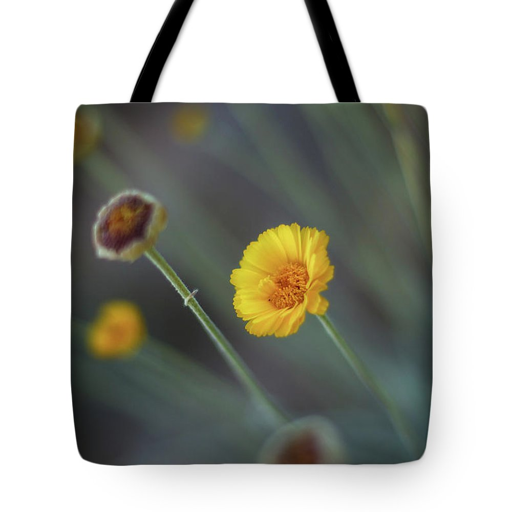 Yellow Tote Bag featuring the photograph Nothing Gold Can Stay by Martina Schneeberg-Chrisien