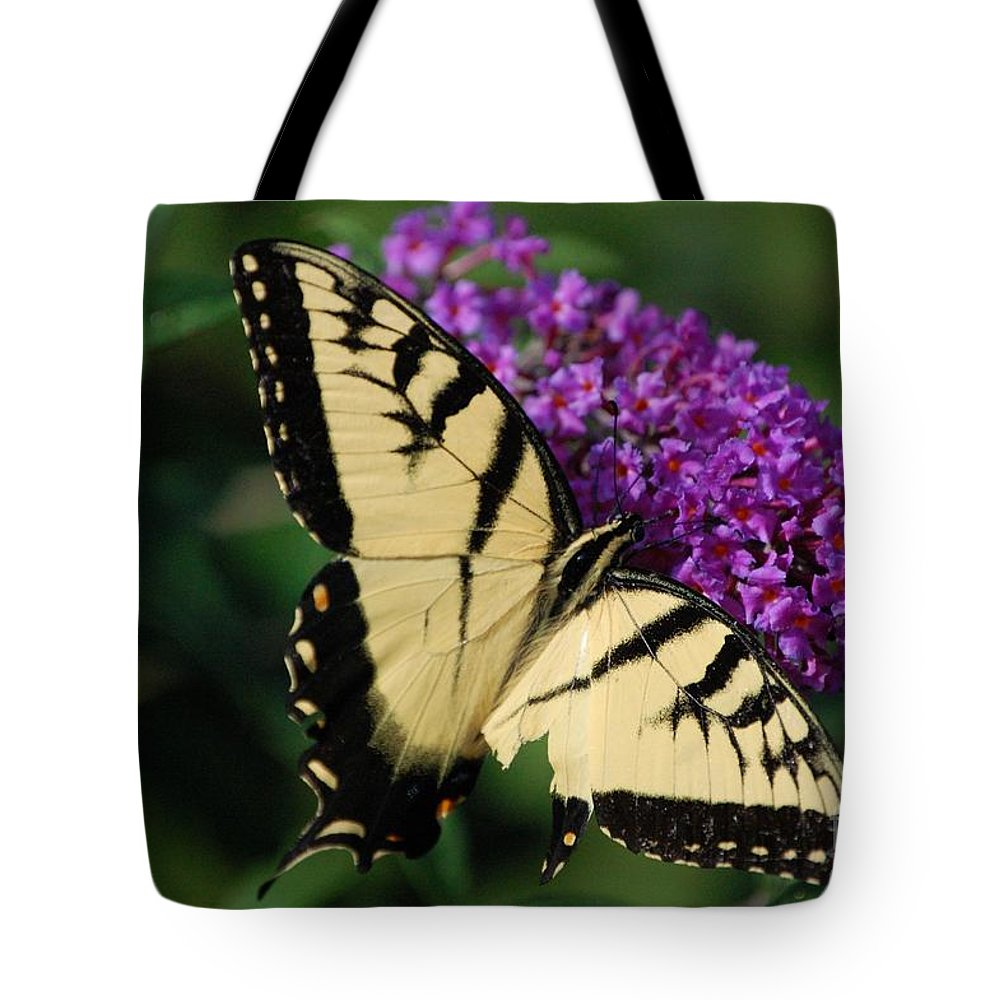 Butterfly Tote Bag featuring the photograph Nothing Is Perfect by Debbi Granruth