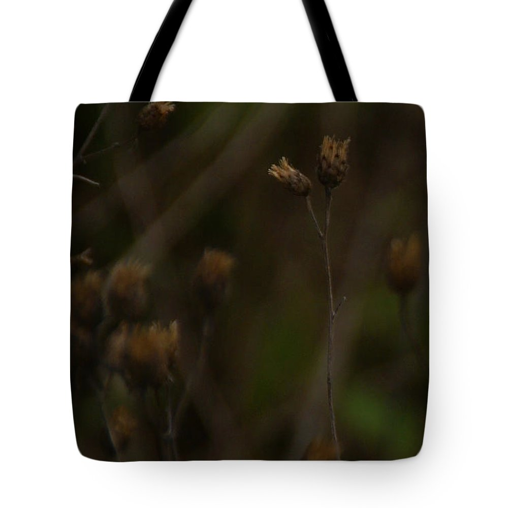 Wildflowers Tote Bag featuring the photograph November by Linda Shafer