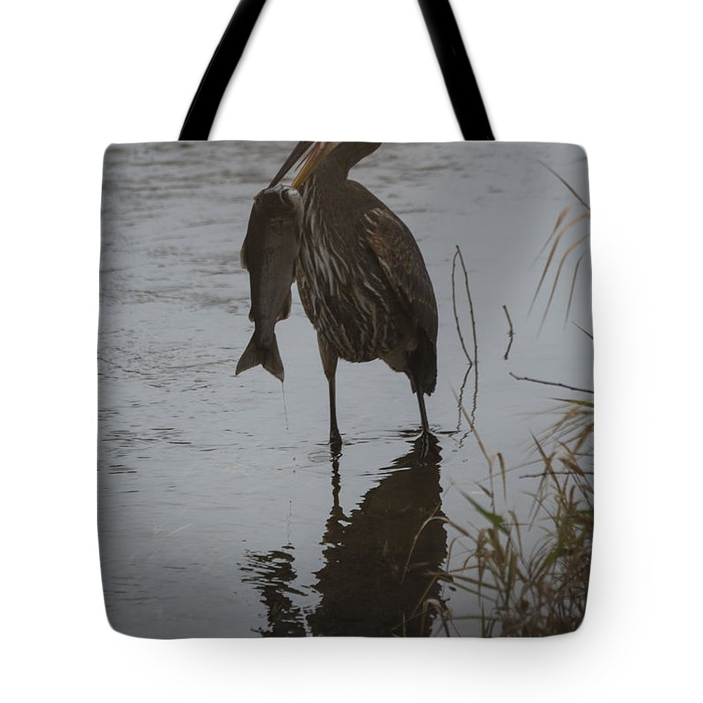 Heron Tote Bag featuring the photograph Now What by Rod Wiens