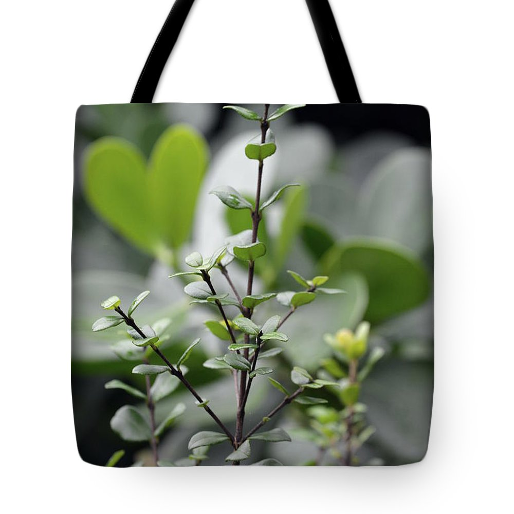 Tote Bag featuring the photograph Nueva Vida by Lenin Caraballo