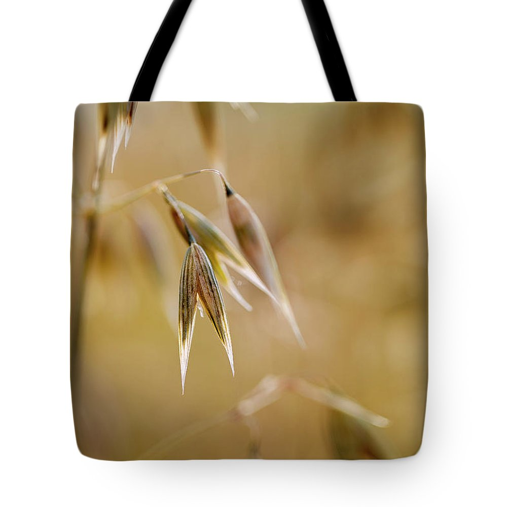 Oat Tote Bag featuring the photograph Summer Oat by Nailia Schwarz