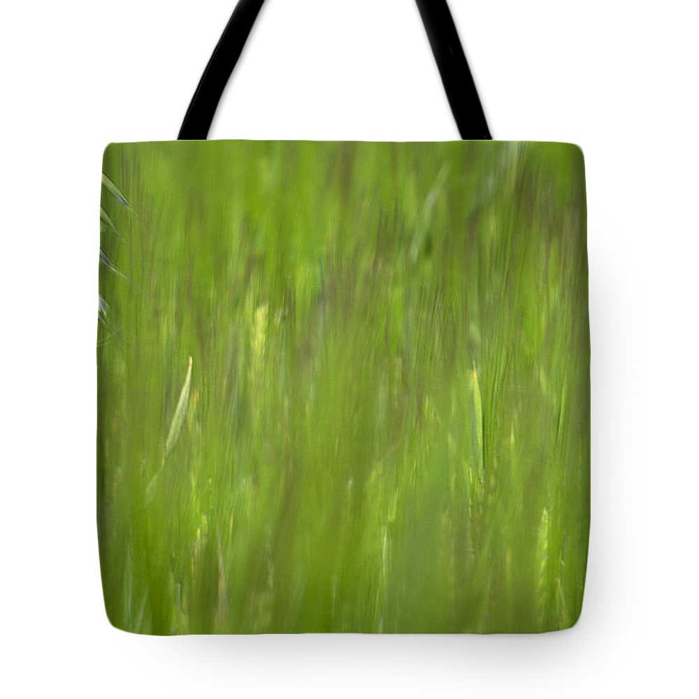 Oat Field Tote Bag featuring the photograph Oatfield by Michael Mogensen