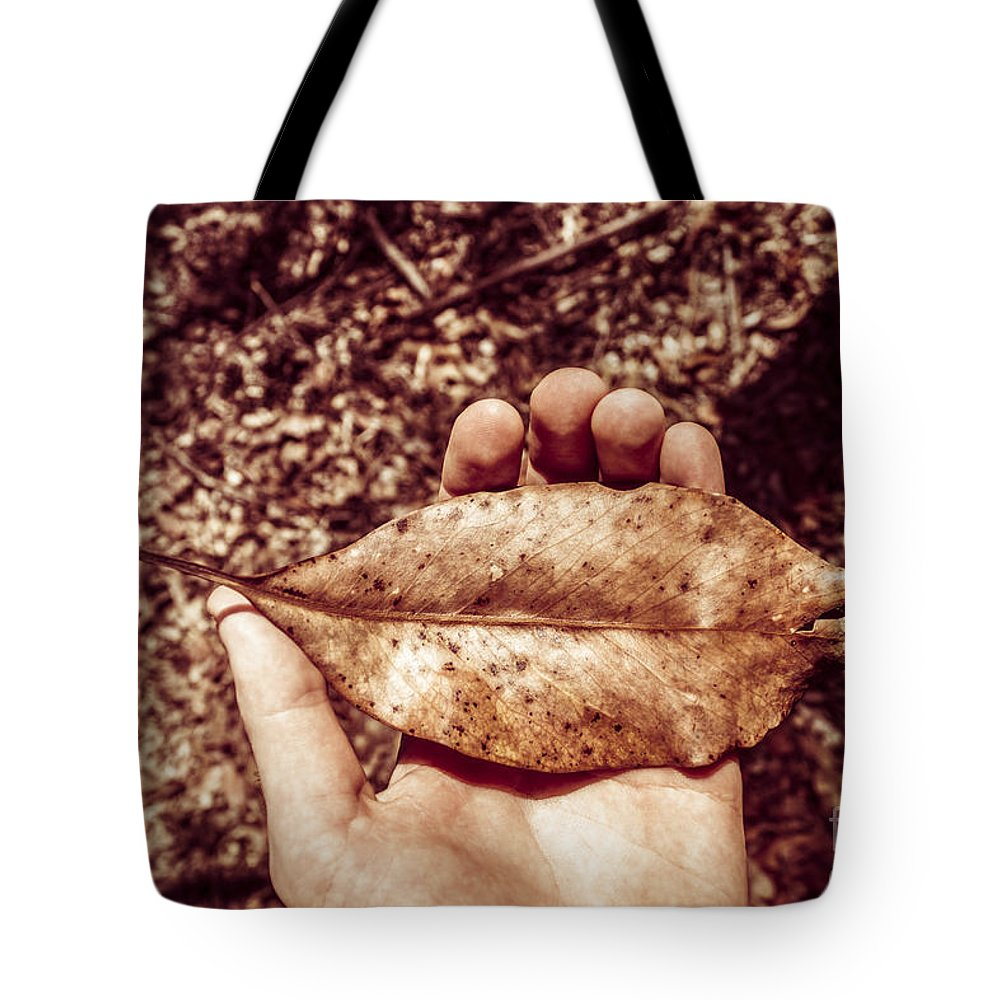 Brown Tote Bag featuring the photograph Observation In Human Nature by Jorgo Photography - Wall Art Gallery