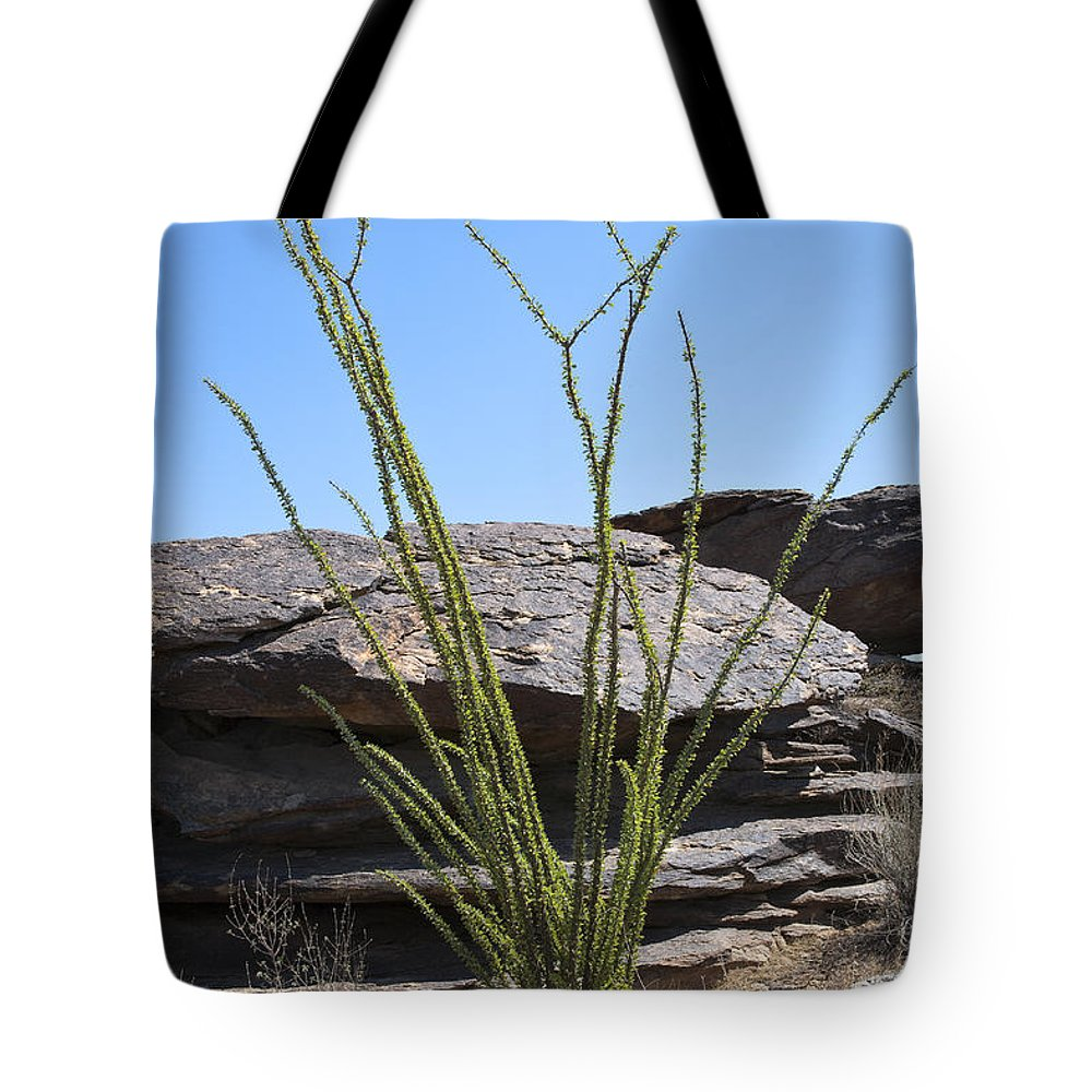 Ocotillo Tote Bag featuring the photograph Ocotillo Of Desert Southwest by Kelley King