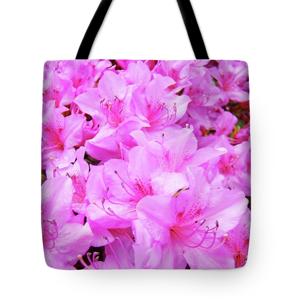 Azalea Tote Bag featuring the photograph Office Art Azalea Flowers Botanical 31 Azaleas Giclee Art Prints Baslee Troutman by Baslee Troutman