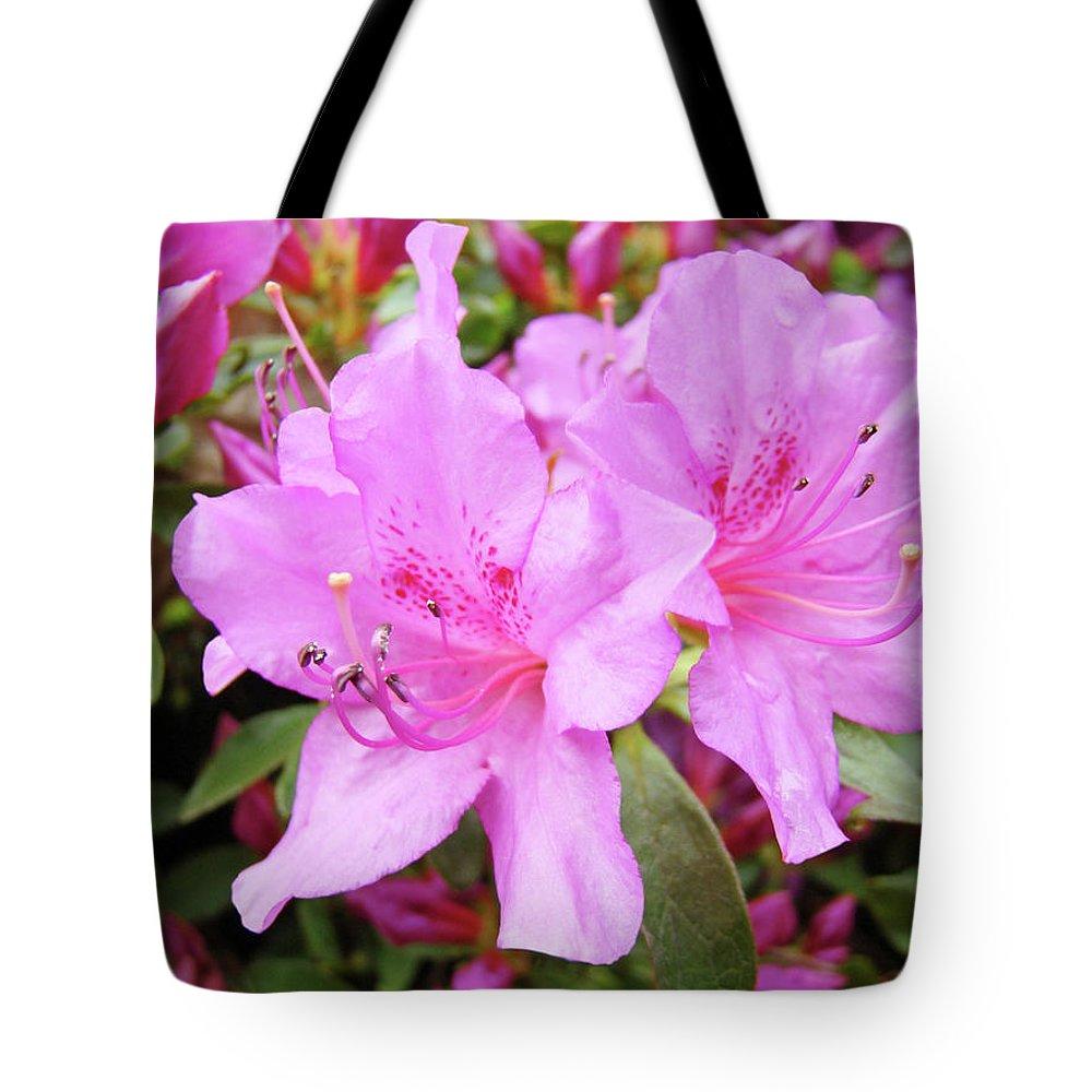 Flower Tote Bag featuring the photograph Office Art Pink Azalea Flower Garden 3 Giclee Art Prints Baslee Troutman by Baslee Troutman