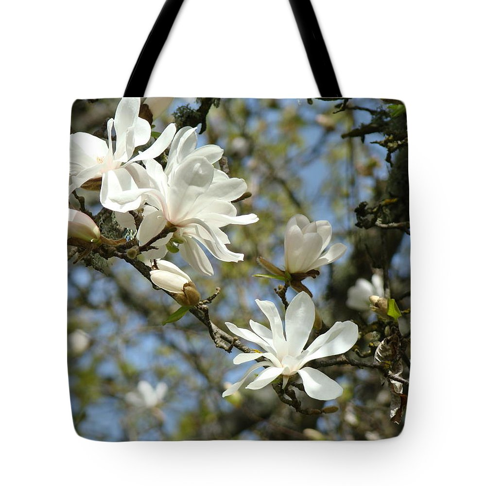 Magnolia Tote Bag featuring the photograph Office Art Prints Magnolia Tree Flowers Landscape 15 Giclee Prints Baslee Troutman by Baslee Troutman