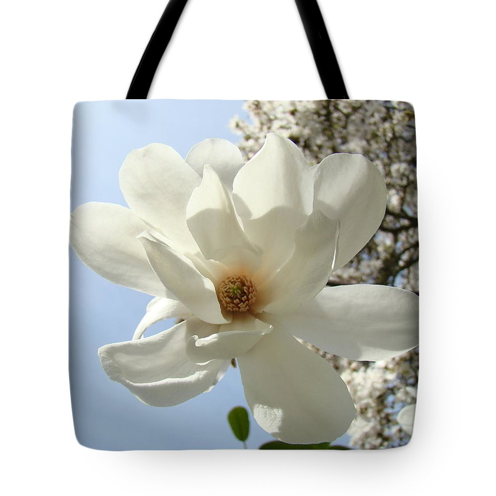 Magnolia Tote Bag featuring the photograph Office Art Prints White Magnolia Flower 66 Blue Sky Giclee Prints Baslee Troutman by Baslee Troutman