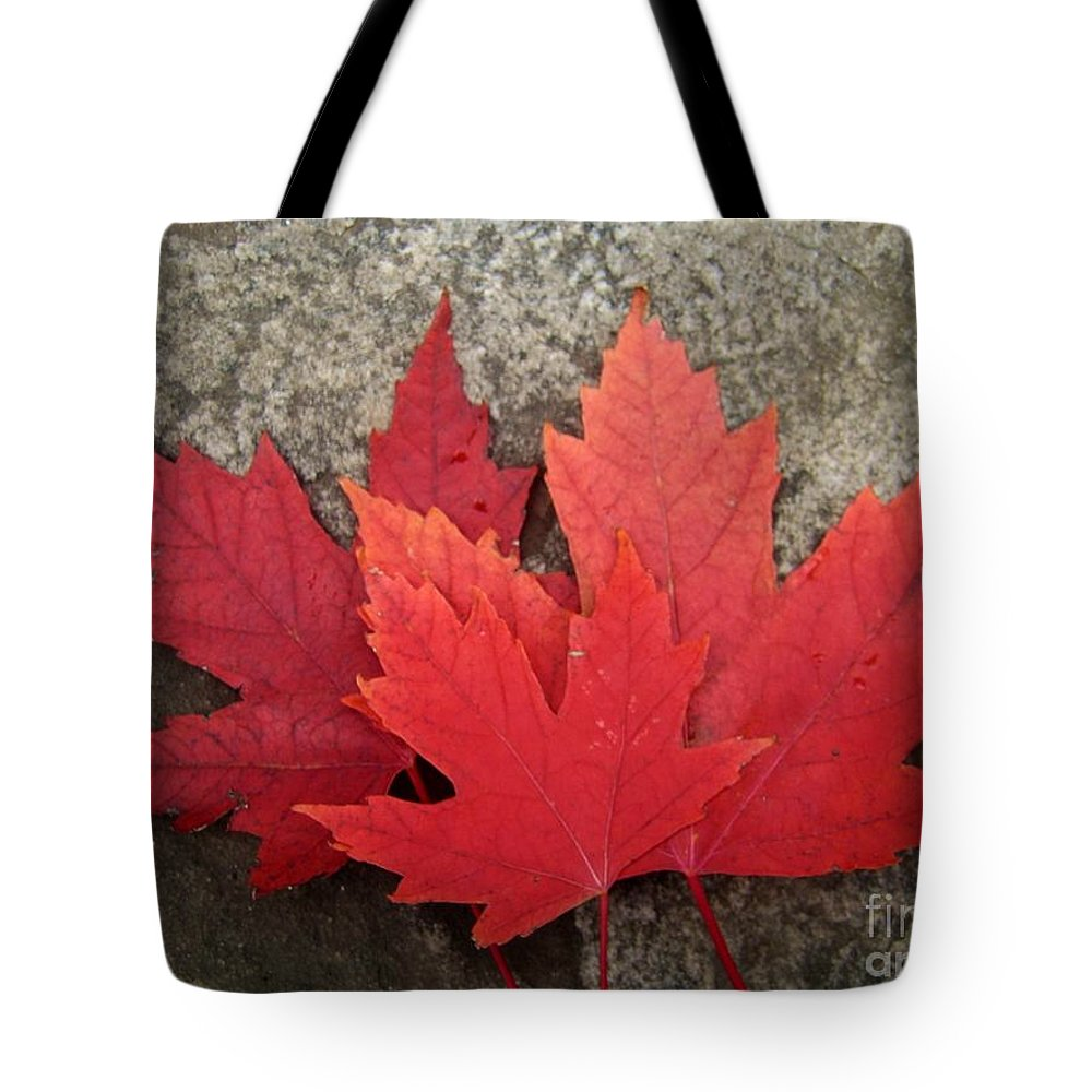 Canadian Symbols Tote Bag featuring the photograph Oh Canada by Reb Frost