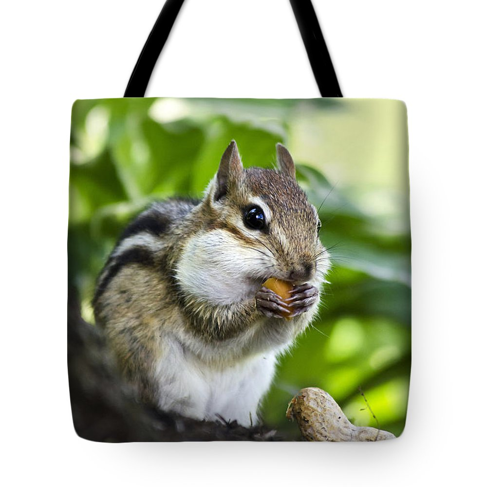 Chipmunk Tote Bag featuring the photograph Oh Nuts by Christina Rollo