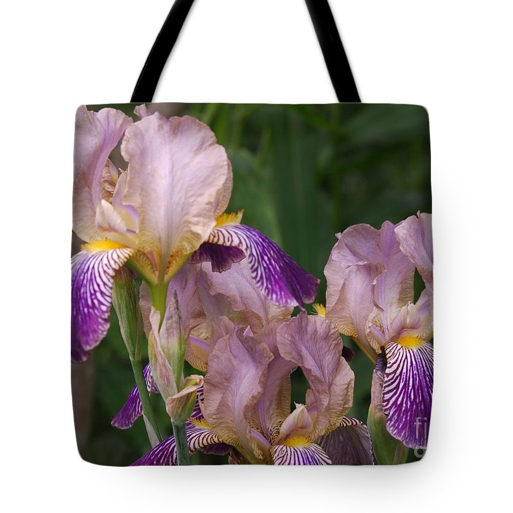 Iris Tote Bag featuring the photograph Old-fashioned Iris by Randy Bodkins