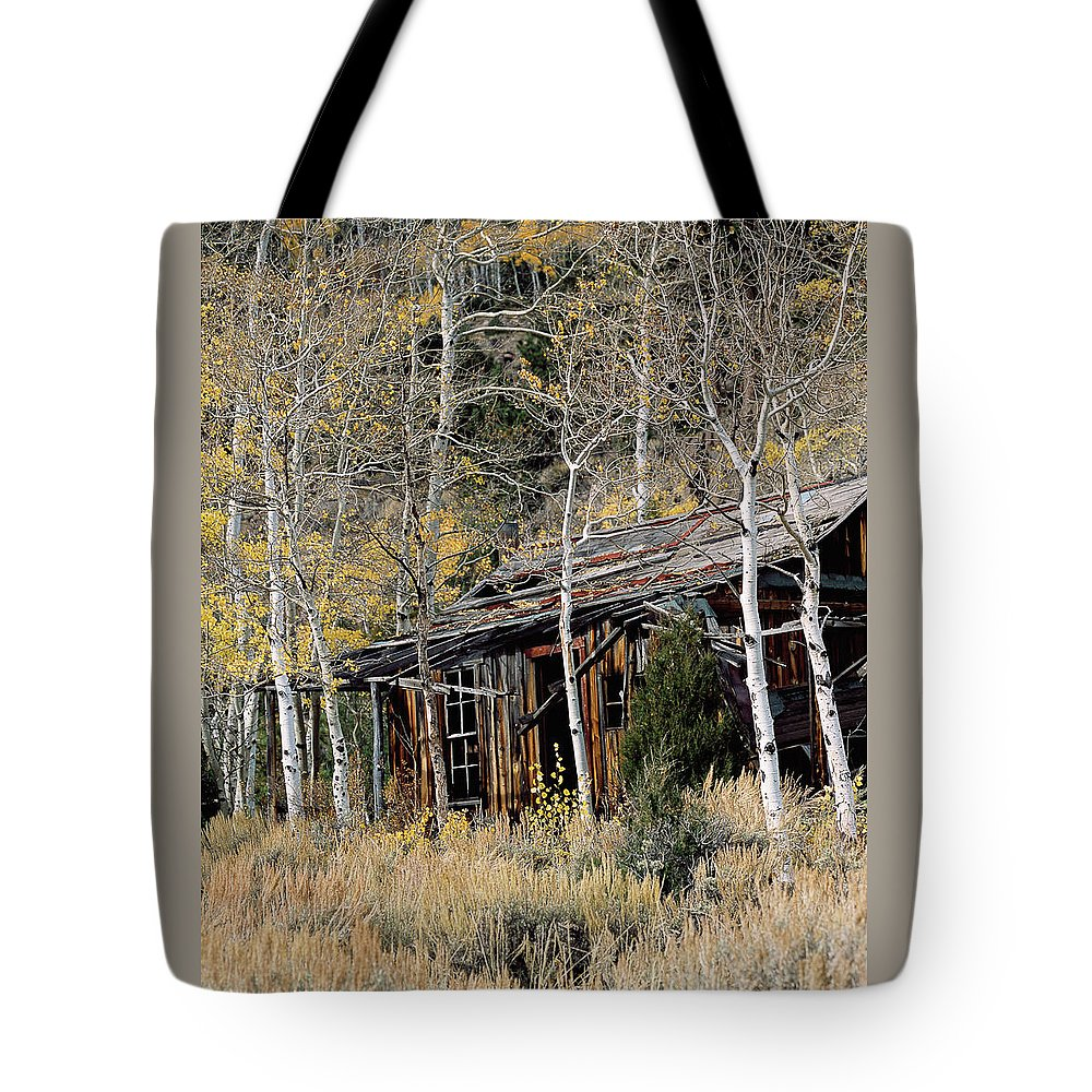 Colorado Tote Bag featuring the photograph Old Homestead by Jim Benest