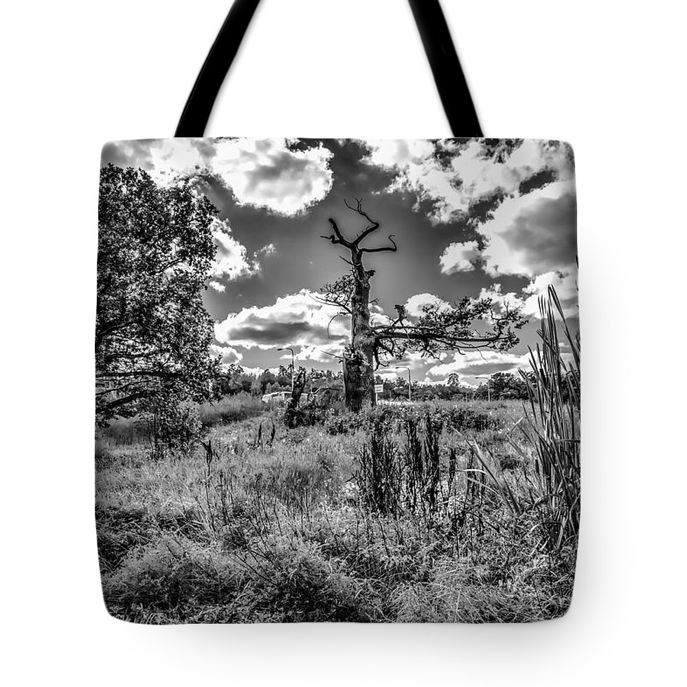 Black And White Tote Bag featuring the photograph Old Oaks Bw. by Leif Sohlman