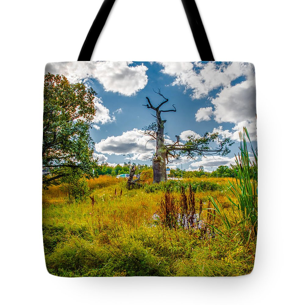 Oak Tote Bag featuring the photograph Old Oaks by Leif Sohlman