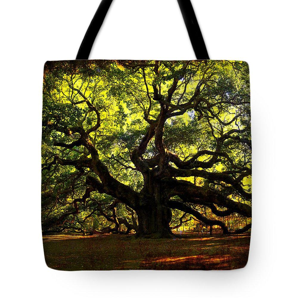 Angel Oak Tote Bag featuring the photograph Old Old Angel Oak In Charleston by Susanne Van Hulst