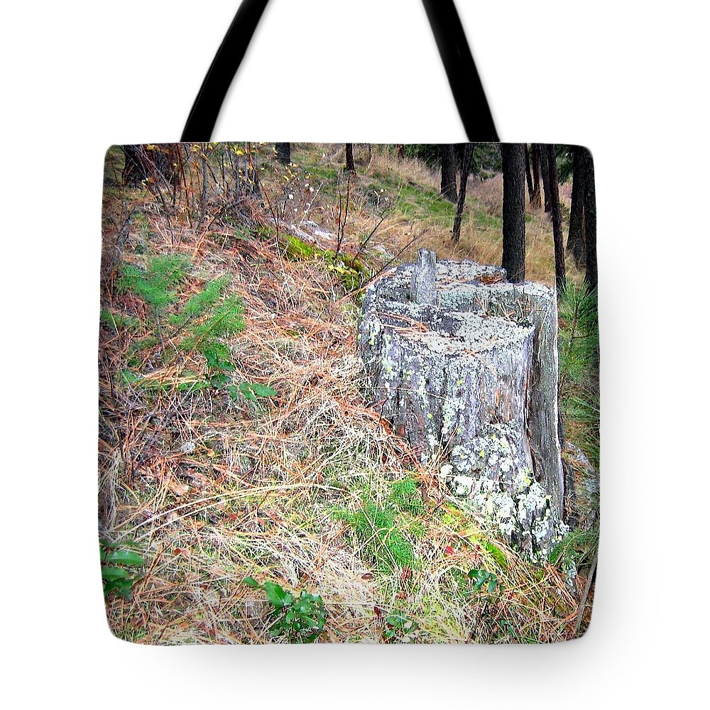 Forest Tote Bag featuring the photograph Old Pine Stump by Will Borden