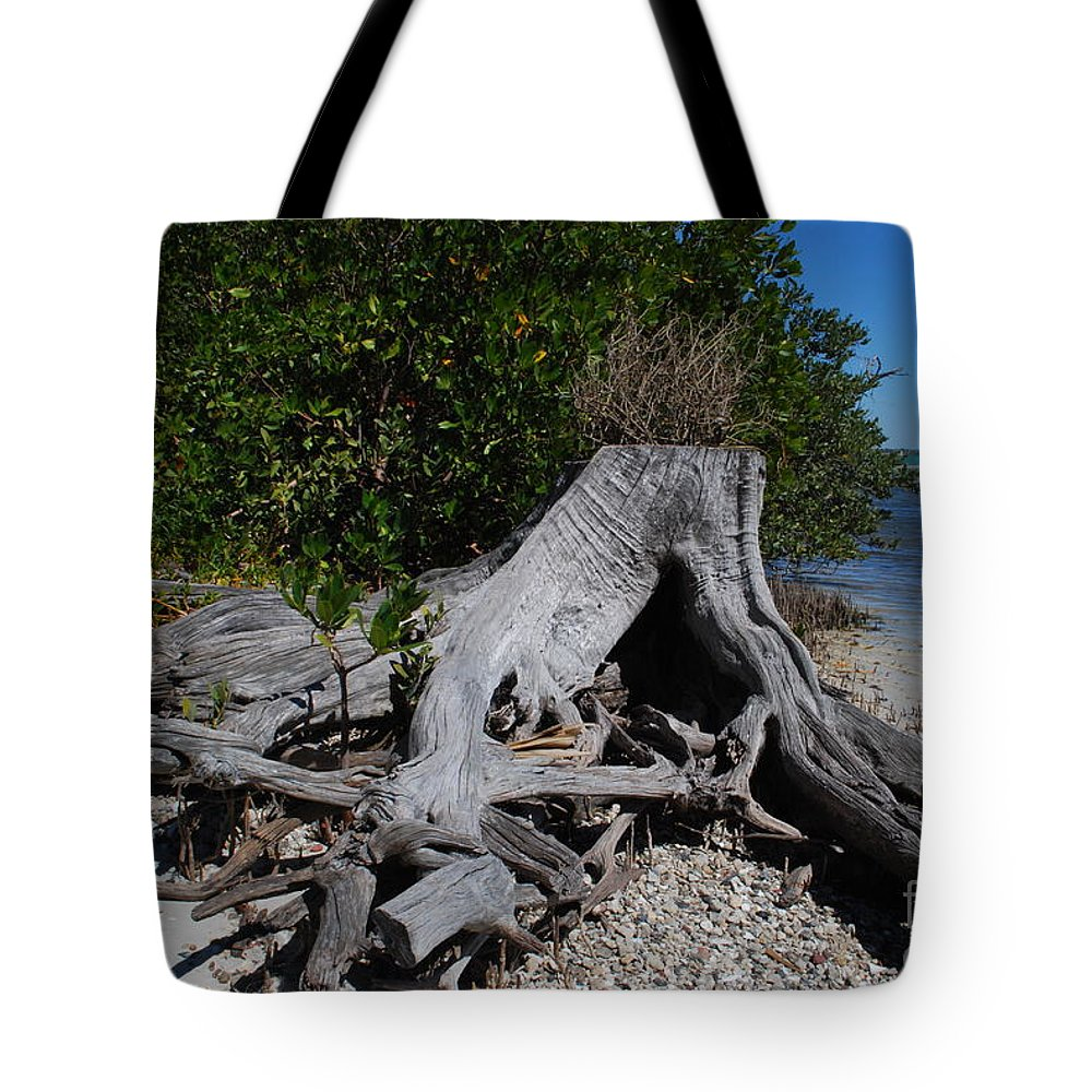 Stump Tote Bag featuring the photograph Old Stump by Gary Wonning