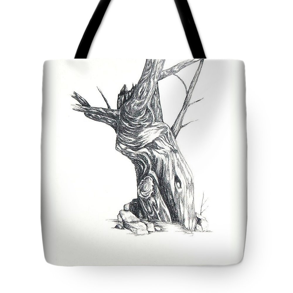 Tree Tote Bag featuring the drawing Old Tree by Brandy House
