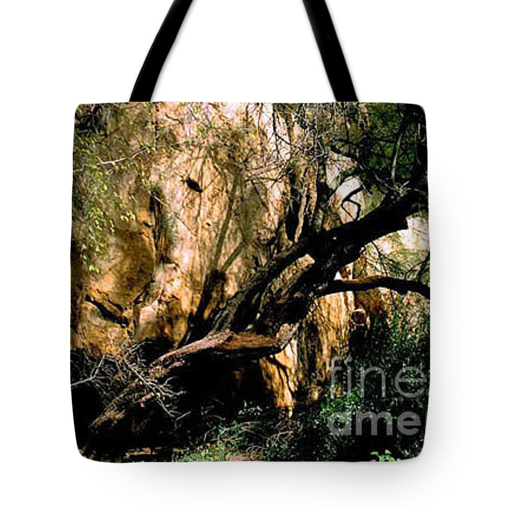 Trees Tote Bag featuring the photograph Old Tree by Kathy McClure