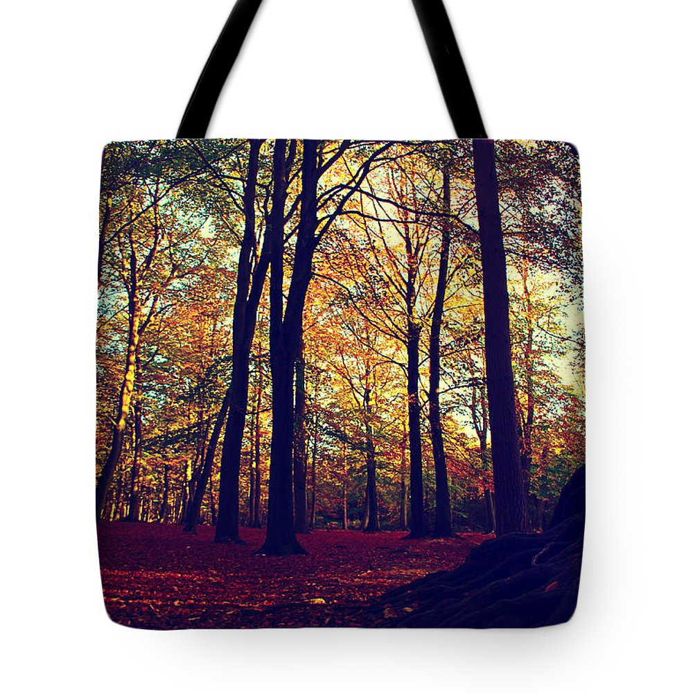 Fall Landscape Tote Bag featuring the photograph Old Tree Silhouette In Fall Woods by Loretta S