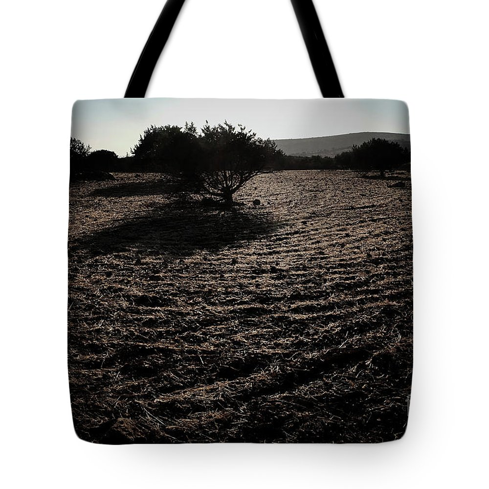 Olive Tote Bag featuring the photograph Olive Oil by Konstantinos Katsouris