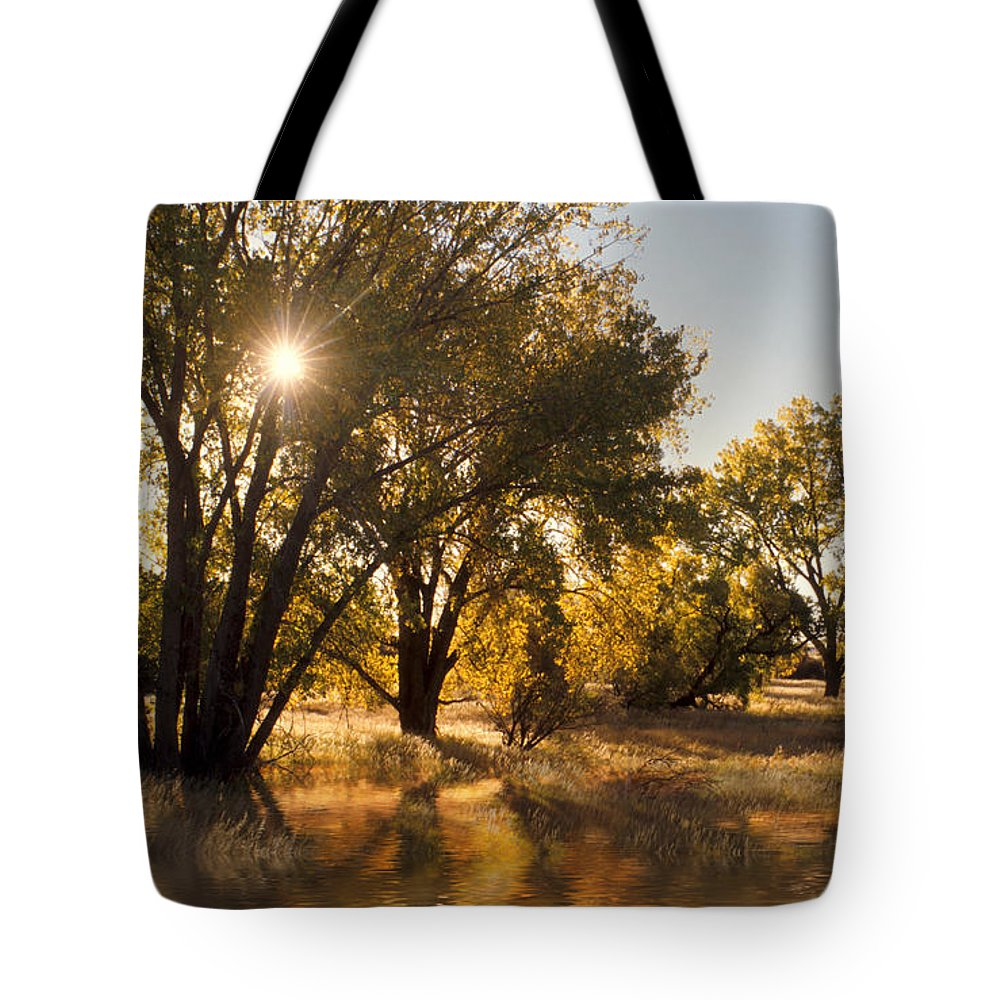 Ftrees Tote Bag featuring the photograph Oliver Sunbursts by Jerry McElroy