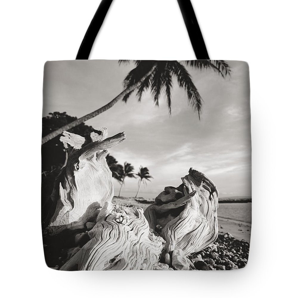 Afternoon Tote Bag featuring the photograph Olowalu Driftwood by Ron Dahlquist - Printscapes