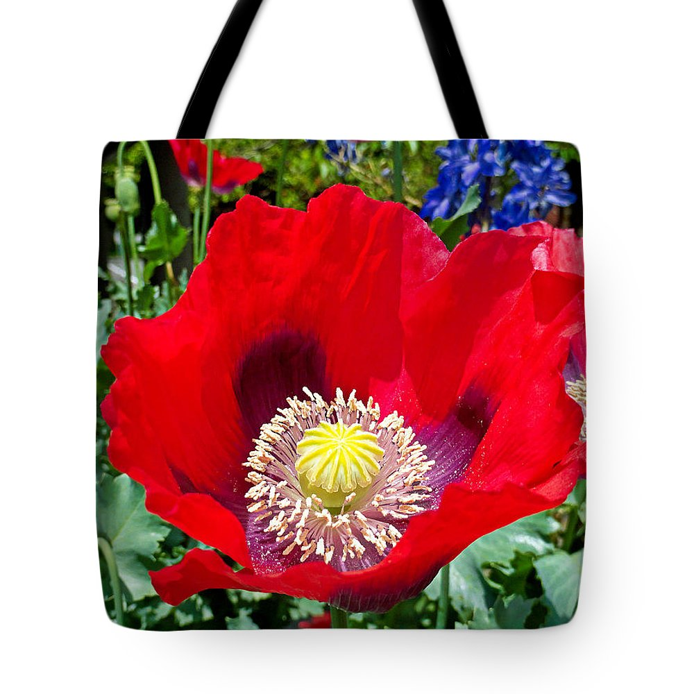 Olympia Tote Bag featuring the photograph Olympia Poppy by Robert Meyers-Lussier